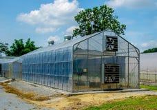 Modern green house Stock Photos