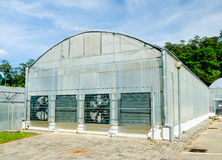Modern green house Royalty Free Stock Photo