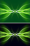 Modern green lines background Stock Images