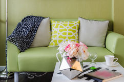 Modern green sofa in living room Stock Photos