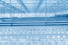Modern greenhouse interior. Toned blue Royalty Free Stock Images