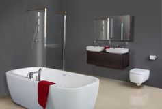 Modern Grey Bathroom. Including bathtub, shower, basins and toilet