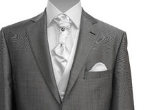 Modern grey man suit Stock Photos