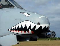 Modern gunship airplane Royalty Free Stock Photo