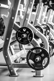 Modern gym interior with bench press equipment in a raw stock images
