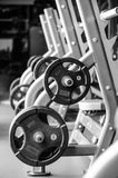 Modern gym interior with bench press equipment in a raw royalty free stock photo