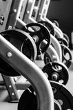 Modern gym interior with bench press equipment in a raw. Modern gym interior with bench press equipment in a row, black and white version stock photography