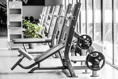 Modern gym interior with bench press equipment in a raw royalty free stock photos