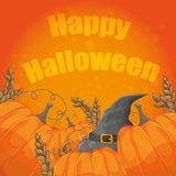 Modern Halloween card with old hat and pumpkins on orange background Royalty Free Stock Photo