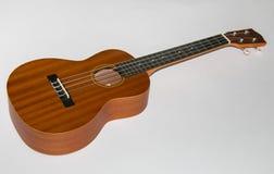 Modern hawaii ukulele guitar Royalty Free Stock Photos