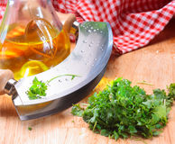 Modern herb cutter (wiegemes) with wooden handles stock images