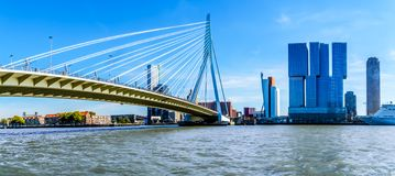 Modern High Rise buildings with the Cable-Stayed Erasmus Bridge over the Nieuwe Maas River in Rotterdam royalty free stock photo
