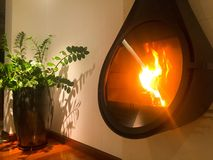 Modern home fireplace with pot plant stock image