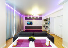 Modern home theater interior Royalty Free Stock Photo
