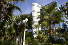 Modern hotel with a wonderful garden in Casablanca Royalty Free Stock Images