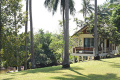 Modern house in coconut garden royalty free stock image