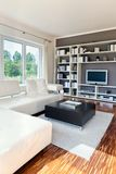 Modern house, living-room Royalty Free Stock Image