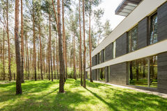 Modern house surrounded by trees. Modern scandinavian style house surrounded by green lawn and tall trees Royalty Free Stock Images