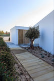 Modern house with  wooden deck and olive tree Royalty Free Stock Photography