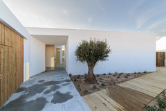 Modern house with  wooden deck and olive tree Stock Images