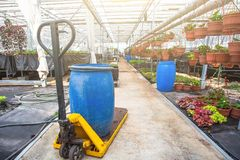 Modern hydroponic greenhouse interior with climate control, cultivation of seedings, flowers. Industrial horticulture stock photos