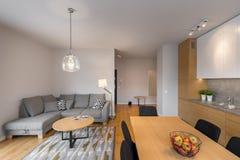 Modern iand bright living room royalty free stock image