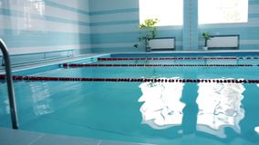 Modern indoor swimming pool with blue water and walls, plants, general view. Modern swimming pool with blue water and walls, plants, general view in day time stock footage