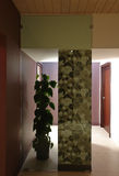 Modern inre korridor Royaltyfri Bild