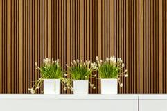 Modern inre med tre blomkrukor Royaltyfri Foto