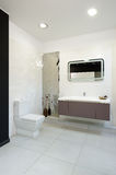 Modern interior. Bathroom Royalty Free Stock Images