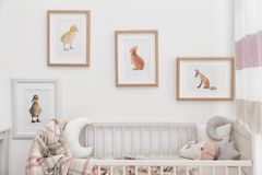 Modern interior of child`s room with pictures. Modern interior of child`s room with animal pictures stock photos