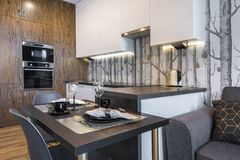 Modern Interior Design Kitchen Stock Photo