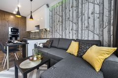Modern interior design small apartment stock image