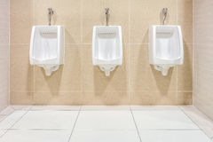 Modern interior design of white ceramic urinals Royalty Free Stock Photography