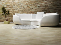 A modern interior wit a sofa, a carpet and a plant Royalty Free Stock Images