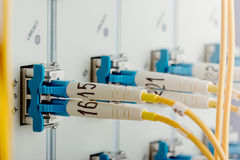 Modern internet router in data center. Modern internet router in data center with 10G interface cards, XFP modules and single mode fiber optic patch cord in Royalty Free Stock Photography