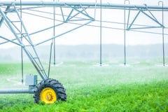 Modern irrigatiesysteem voor een wortel op een industrieel landbouwbedrijf royalty-vrije stock fotografie