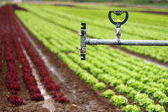 Modern Irrigation System - Details Royalty Free Stock Photography