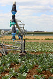 Modern irrigation system - details Stock Photography