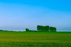 Modern irrigation system Stock Image