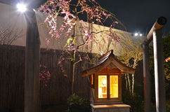 Modern Japanese Shrine at night Stock Images