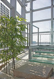 Modern Japanese theme greenhouse. Modern Japanese style greenhouse office viewing gallery stock photography