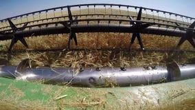 Modern John Deere combine harvesting grain in the field stock video