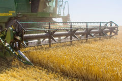 Modern John Deere combine harvesting grain in the field Royalty Free Stock Photography
