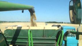 Modern John Deere combine harvesting grain on a storage trailer stock video