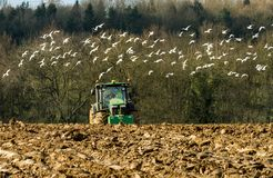 Modern John Deere tractor pulling a plough followed by gulls Stock Images