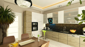Modern kitchen design. With flush cabinet Royalty Free Stock Photos