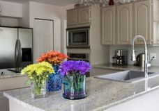 Modern kitchen with flowers on counter Royalty Free Stock Photography