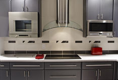 Modern Kitchen Horizontal. High end kitchen with European style grey cabinets and stainless appliances stock photo