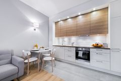 Modern kitchen interior design. In white finishing Royalty Free Stock Images